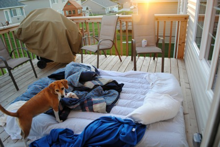 Sleeping on the deck with mabel